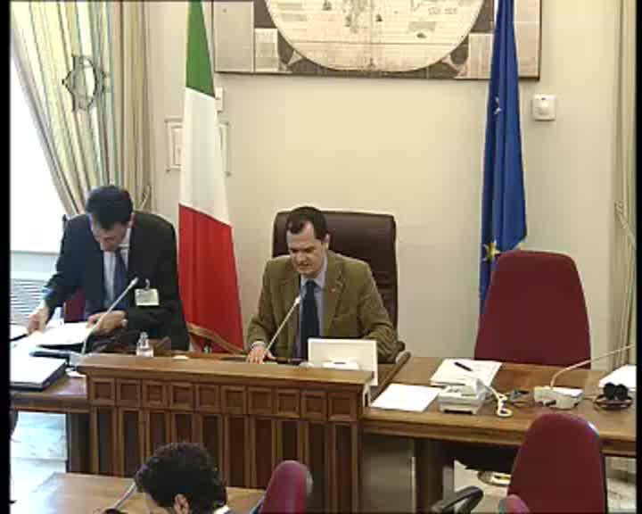 Commissione esteri promozione sistema paese audizione for Commissione esteri camera